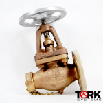 Pima Valve Bronze Flanged By Globe Monel Trim B127E