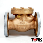 Pima Valve B1620E Bronze Flanged check valve swing check bronze trim