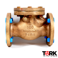 Pima Valve Bronze Flanged check valve swing check bronze trim B1620E