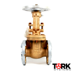 Pima Valve Bronze Flanged gate valve OS&Y bronze trim B102E copy