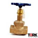 Bronze-threaded-globe-valve-300-LB