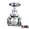 Steel-Globe-valve-Stainless-steel-trim-150-LB