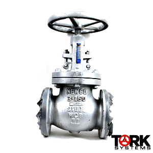 Steel-Globe-valve-Stainless-steel-trim-150-LB